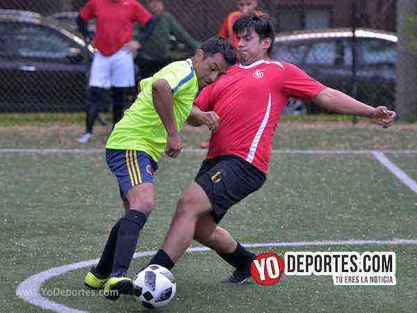 Brasil-Espana-World Cup-Illinois International Soccer League Chicago futbol