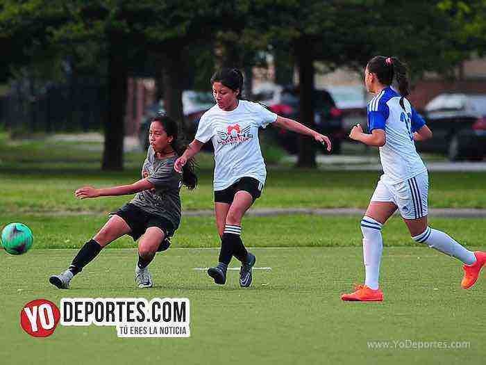 Tigers-Cougars-Women Premier Academy Chicago soccer
