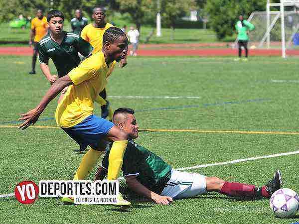 Adiós Jamstars Bulldogs a la semifinal de la Liga Interamericana